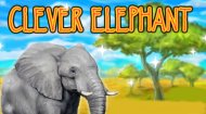 Elephant Protection Game