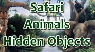 Safari Hidden Animals