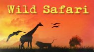 Safari Hidden Objects Game